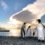 Открытие и исследования Антарктиды — интересные факты