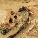 Почему у древних скелетов идеальная улыбка