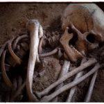 Скелет женщины с Карибских Островов — 6000 лет ожидания