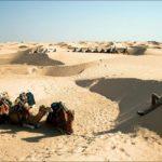 Пустыня Сахара — география, история, температура воздуха
